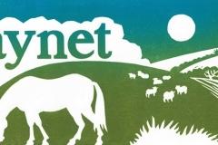 Haynet logo